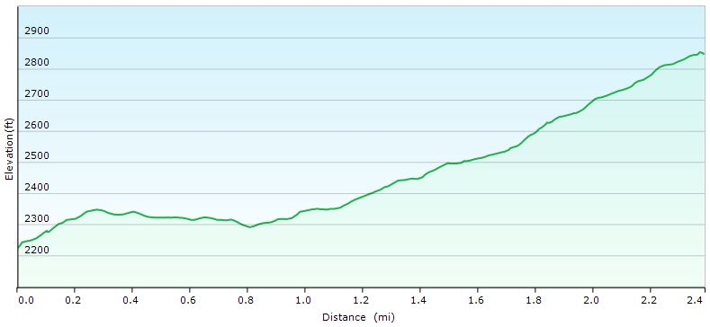Hazel Falls Day 2 Elevation Profile - Sintax77